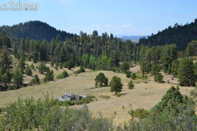 TBD Secluded Canyon Heights, Florissant, CO 80816 (#2432955) :: The Daniels Team