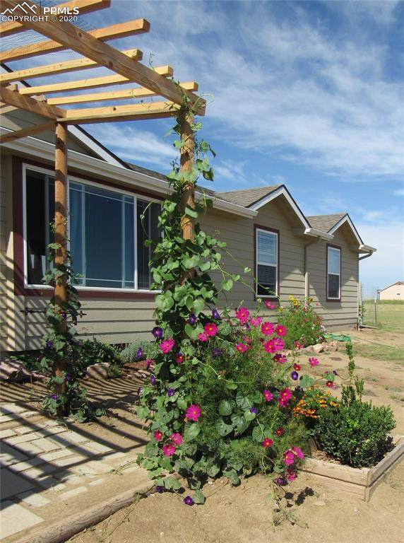 30087 Lonesome Dove Lane, Calhan, CO 80808 (#2476044) :: Action Team Realty