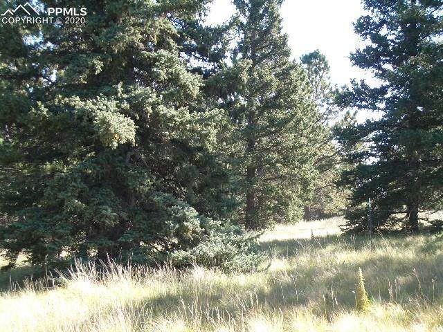 404 Silvermoon Heights, Divide, CO 80814 (#3225835) :: Action Team Realty