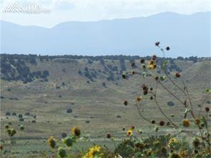 50 Reno Road, Pueblo, CO 81004 (#3232516) :: 8z Real Estate
