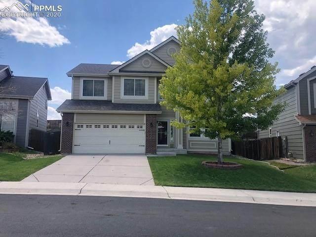 707 Hampstead Avenue, Castle Rock, CO 80104 (#3520186) :: 8z Real Estate