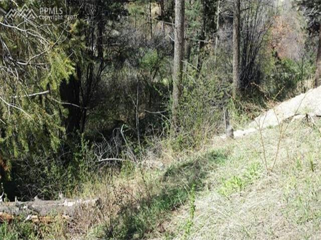 Wildwood Road, Cascade, CO 80809 (#4611673) :: 8z Real Estate