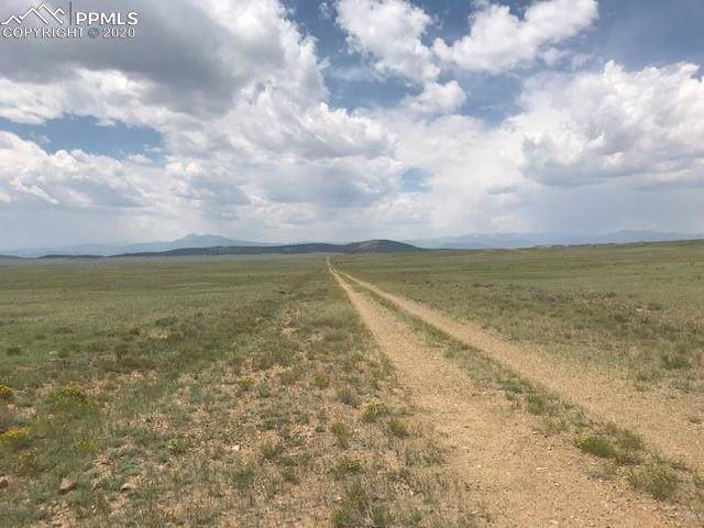 1375 Rio Blanco Road, Hartsel, CO 80449 (#4669499) :: 8z Real Estate