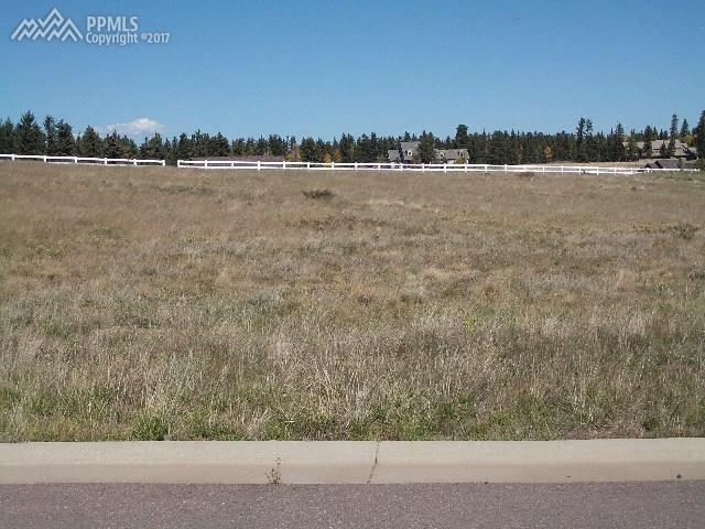 104 Samantha Way, Divide, CO 80814 (#4853335) :: 8z Real Estate