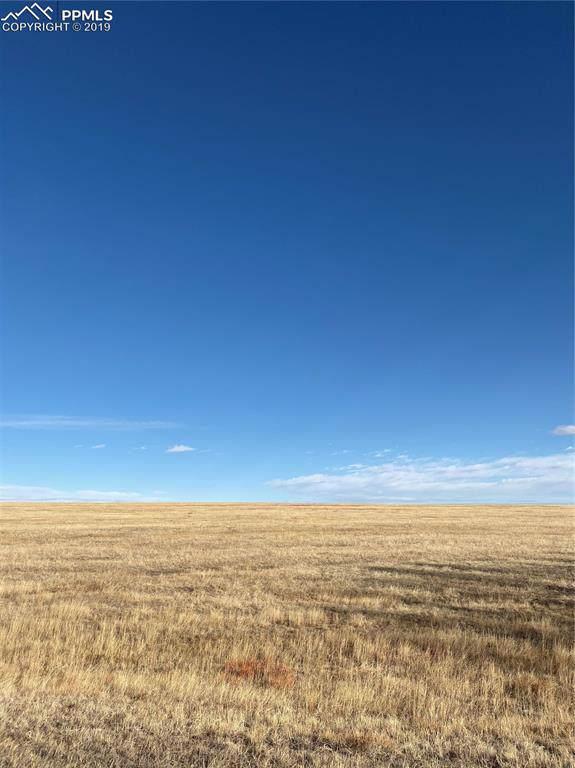 1090 Engleby Drive, Colorado Springs, CO 80930 (#5547035) :: Tommy Daly Home Team