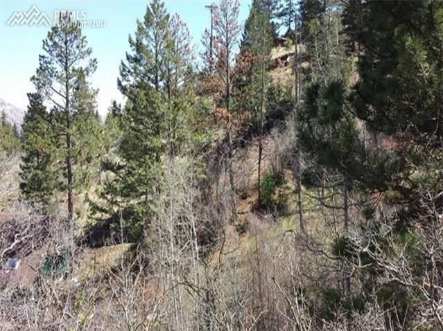 10212 Mountain Road, Cascade, CO 80809 (#5703859) :: 8z Real Estate