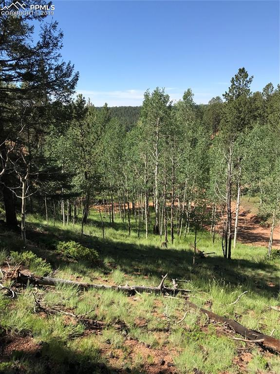 TBD Remwood Circle, Divide, CO 80814 (#5906102) :: Action Team Realty