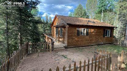 331 Donzi Trail, Florissant, CO 80816 (#5906808) :: 8z Real Estate