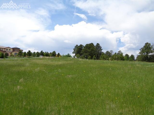 4822 Mountain Dance Drive, Colorado Springs, CO 80908 (#5971601) :: The Treasure Davis Team
