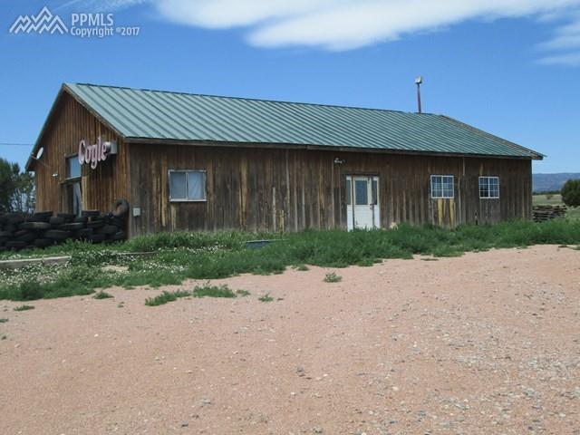 9999 Highway 115 Highway, Penrose, CO 81240 (#6215561) :: 8z Real Estate