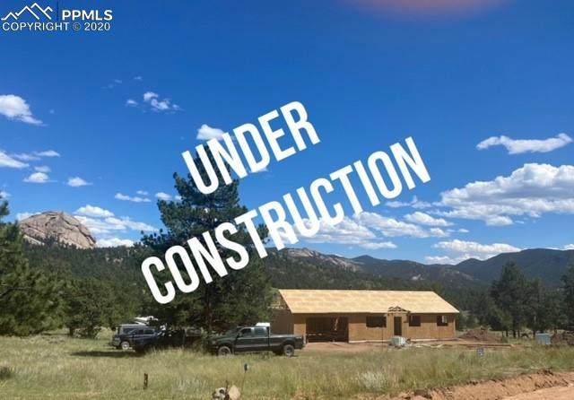 874 Hackamore Drive, Florissant, CO 80816 (#6249324) :: The Treasure Davis Team
