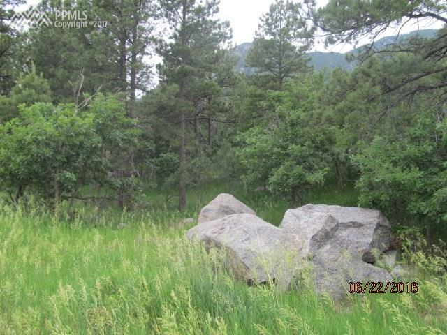 5960 Buttermere Drive, Colorado Springs, CO 80906 (#6404911) :: Harling Real Estate