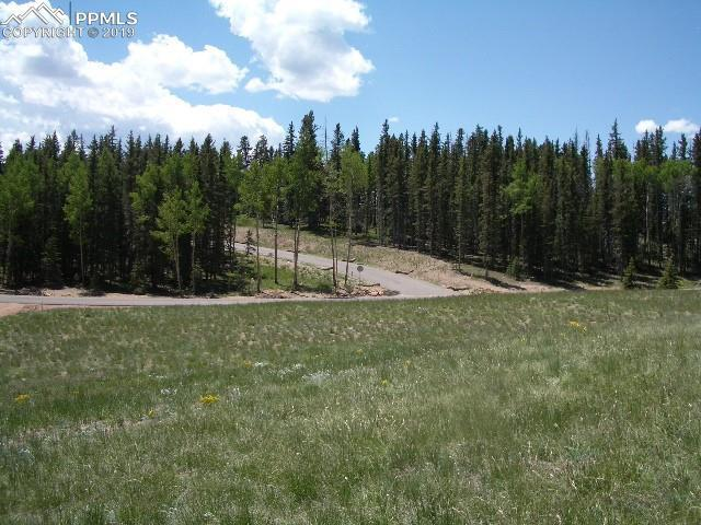 309 Pinaceae Heights, Divide, CO 80814 (#6574445) :: The Kibler Group