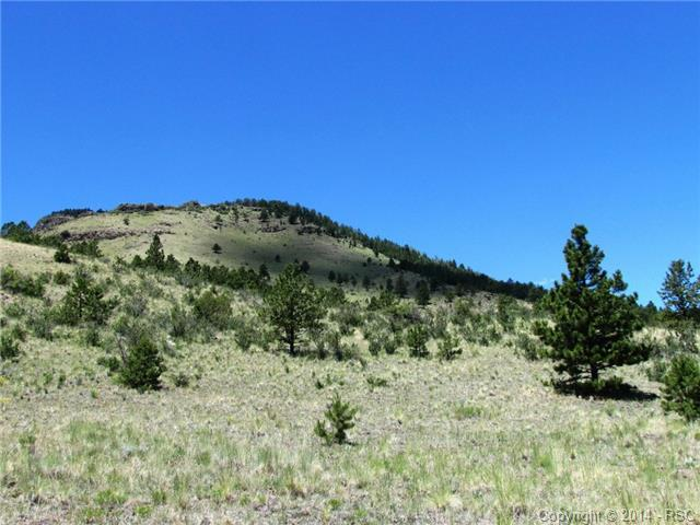 Tract 56 Witcher Mountain Road, Guffey, CO 80820 (#7319515) :: 8z Real Estate