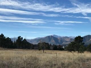 14165 Gleneagle Drive, Colorado Springs, CO 80921 (#7364402) :: 8z Real Estate