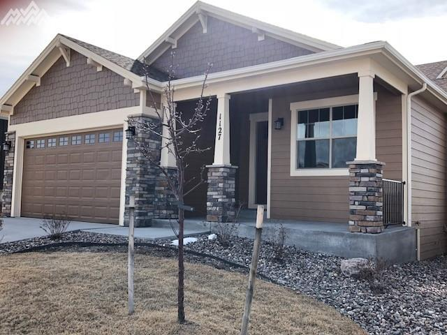 1127 Seabiscuit Drive, Colorado Springs, CO 80921 (#7435651) :: 8z Real Estate
