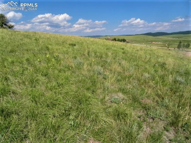 108 Allison Place, Divide, CO 80814 (#7903981) :: Harling Real Estate