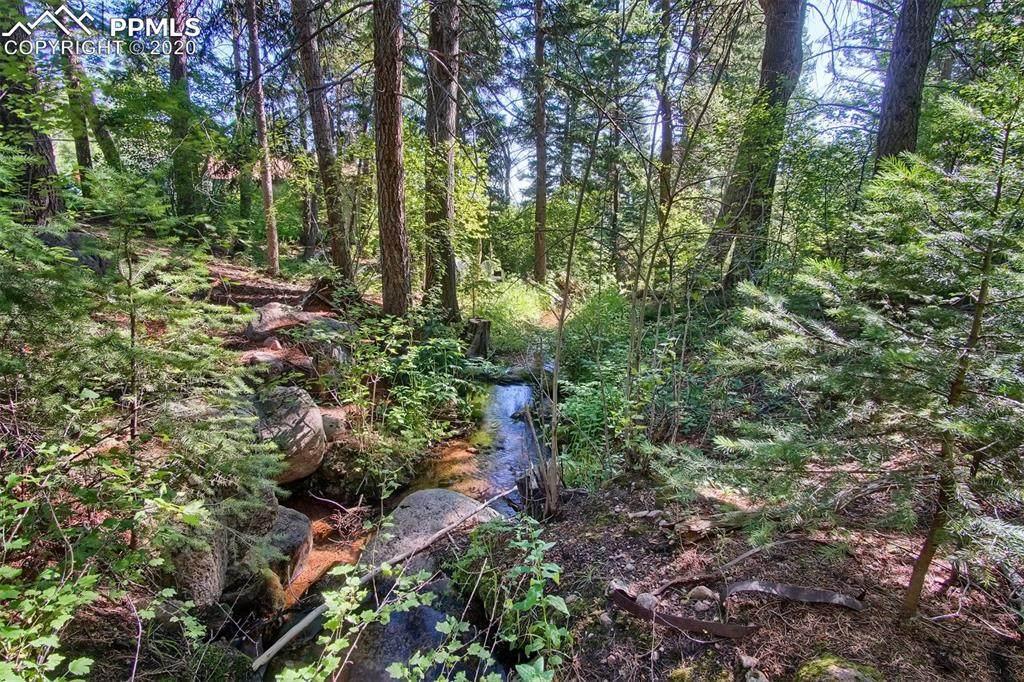 4320 Green Mountain Drive - Photo 1