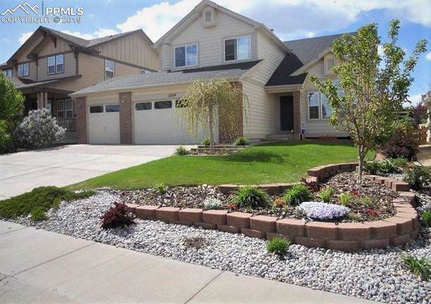 12114 Point Reyes Drive, Peyton, CO 80831 (#8964169) :: Action Team Realty