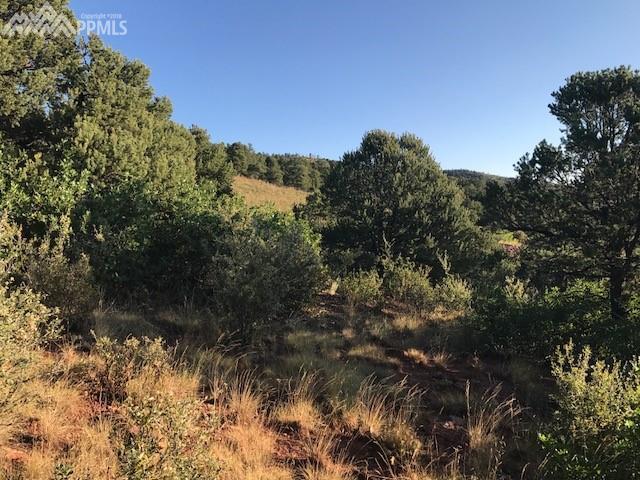 4580 Monitor Rock Lane, Colorado Springs, CO 80904 (#9159365) :: The Treasure Davis Team