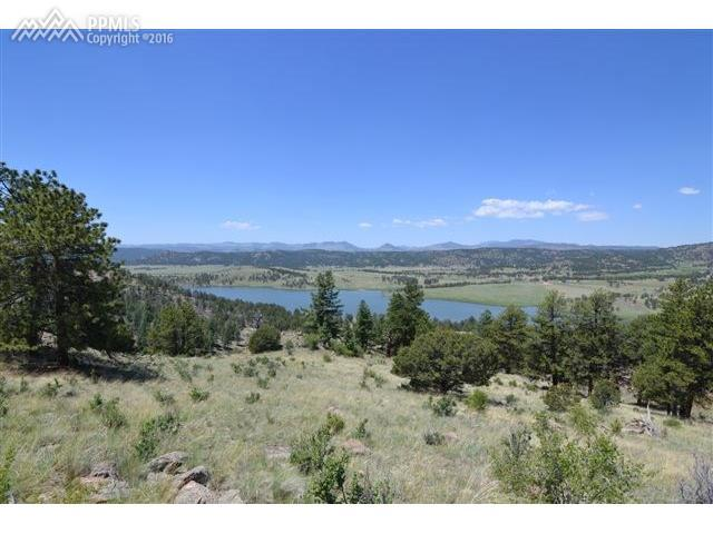 872 Lakeview Forest Heights, Florissant, CO 80816 (#9176371) :: 8z Real Estate