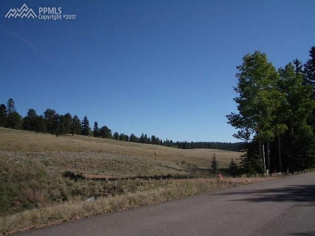 309 Pinaceae Heights, Divide, CO 80814 (#9701047) :: 8z Real Estate