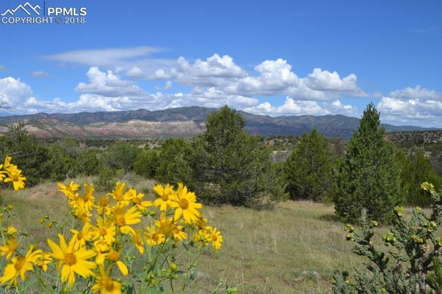 0 Garden Park Road, Canon City, CO 81212 (#9738676) :: 8z Real Estate