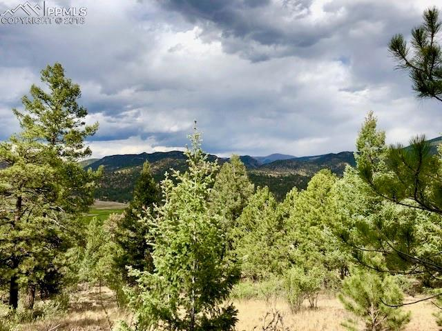 4943 County 11 Road, Florissant, CO 80816 (#9783611) :: 8z Real Estate
