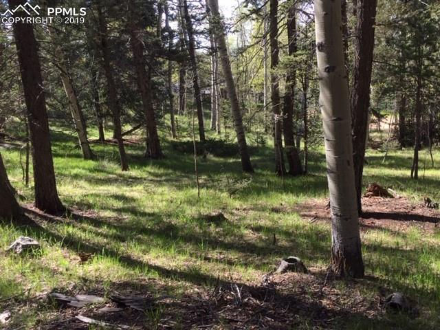 TBD Will Stutley Drive, Divide, CO 80814 (#1268325) :: The Daniels Team
