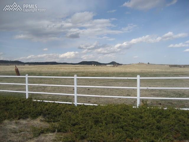 15050 Murphy Road, Peyton, CO 80831 (#2342930) :: 8z Real Estate