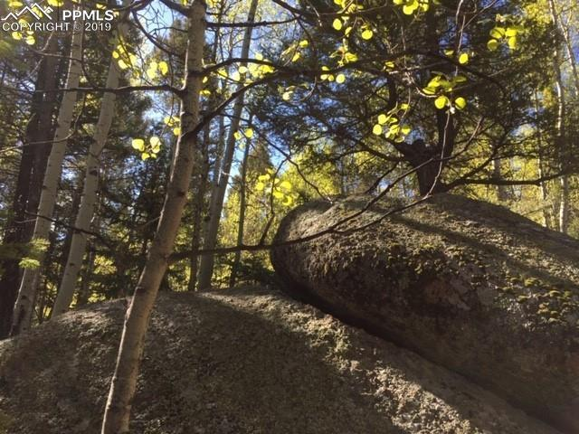 TBD High Road Drive, Divide, CO 80814 (#2664053) :: CC Signature Group