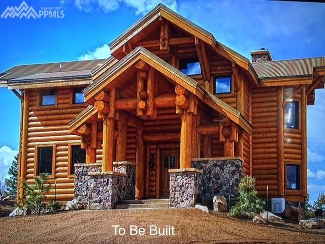 2001 County 5 Road, Fairplay, CO 80440 (#2966989) :: Action Team Realty