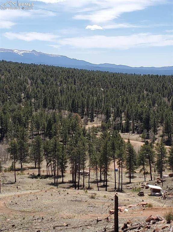 83 Trail Creek Road, Lake George, CO 80827 (#3217121) :: Action Team Realty