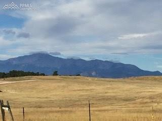 5450 Haes Haven View, Colorado Springs, CO 80908 (#5241531) :: 8z Real Estate