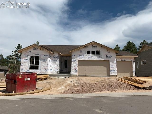 16285 Thunder Cat Way, Monument, CO 80132 (#5548325) :: The Kibler Group