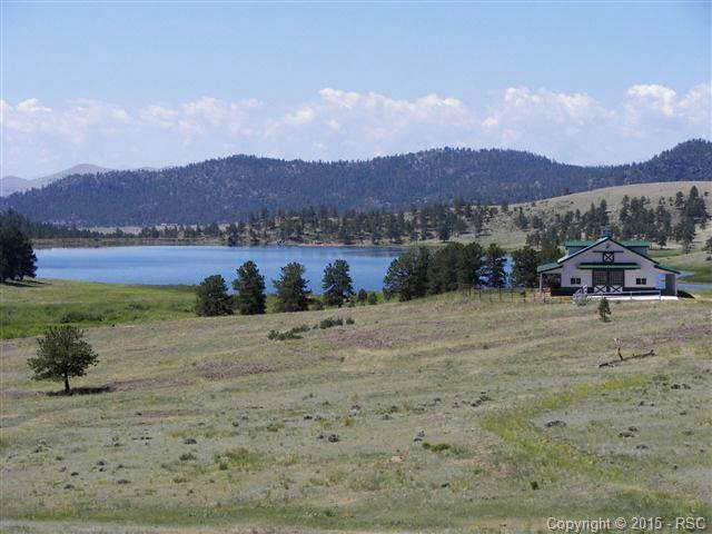 224 Lakeview Heights, Florissant, CO 80816 (#652900) :: RE/MAX Advantage