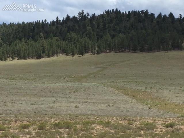 Sulphur Mountain Road, Hartsel, CO 80449 (#6531901) :: 8z Real Estate