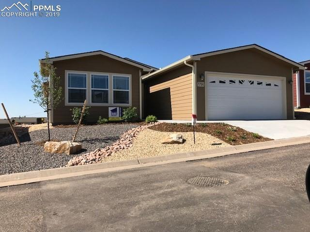 7791 Whiptail Point, Colorado Springs, CO 80922 (#8399976) :: CC Signature Group