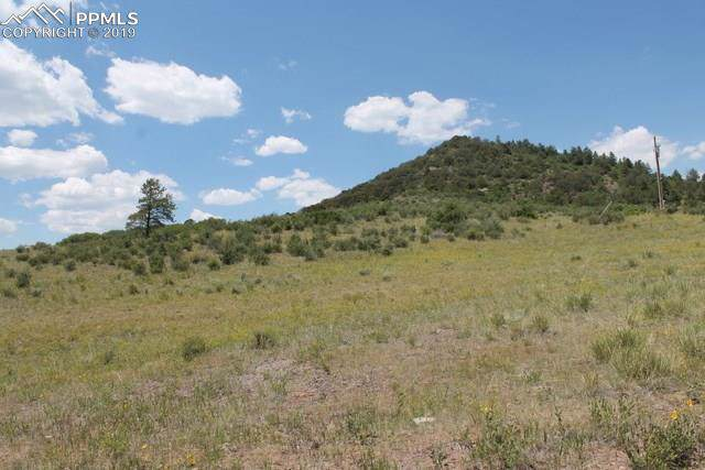 Lot 83 S Tallahassee Trail, Canon City, CO 81212 (#8995537) :: The Treasure Davis Team