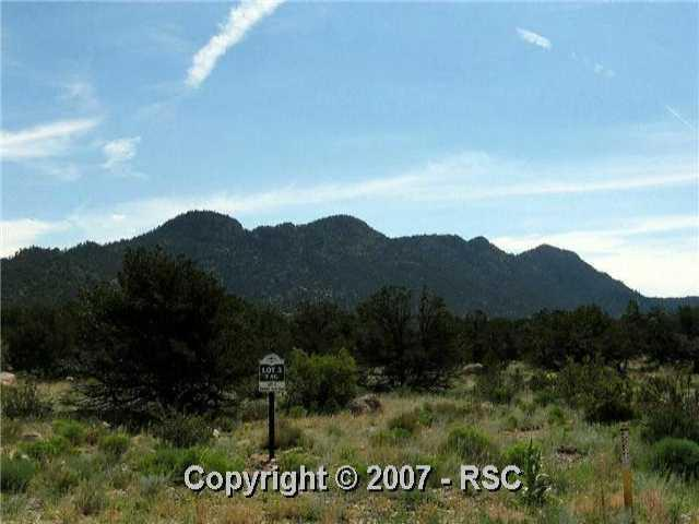 29995 . Teal Road, Buena Vista, CO 81211 (#420799) :: 8z Real Estate