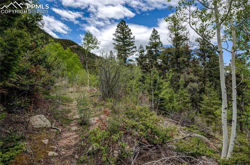 9005 Mountain Road - Photo 1