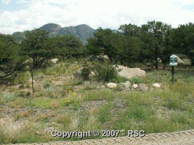 29973 . Teal Road, Buena Vista, CO 81211 (#573164) :: 8z Real Estate