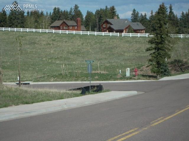 102 Samantha Way, Divide, CO 80814 (#5811132) :: 8z Real Estate
