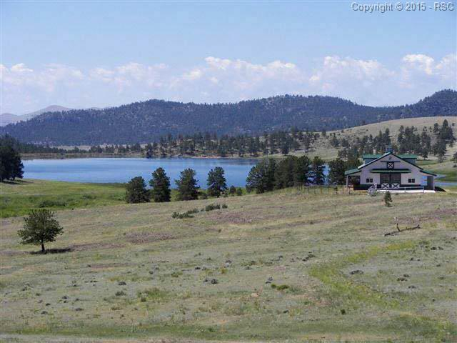 224 Lakeview Heights, Florissant, CO 80816 (#770690) :: RE/MAX Advantage