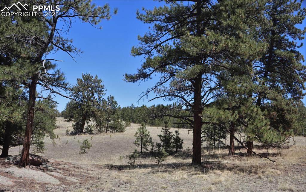 1509 Timber Mesa - Photo 1