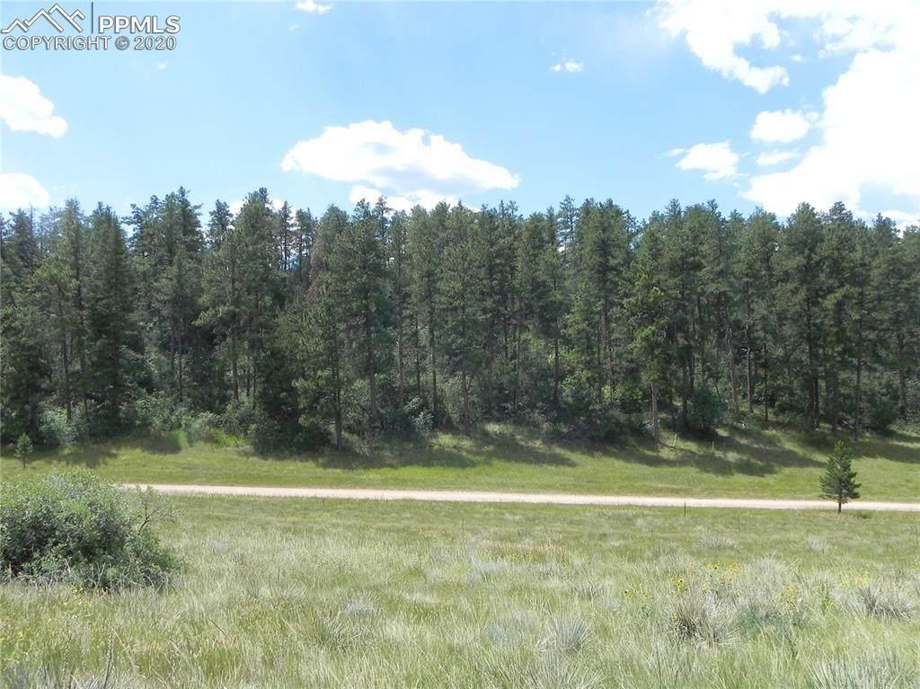 4596 Comanche Drive - Photo 1