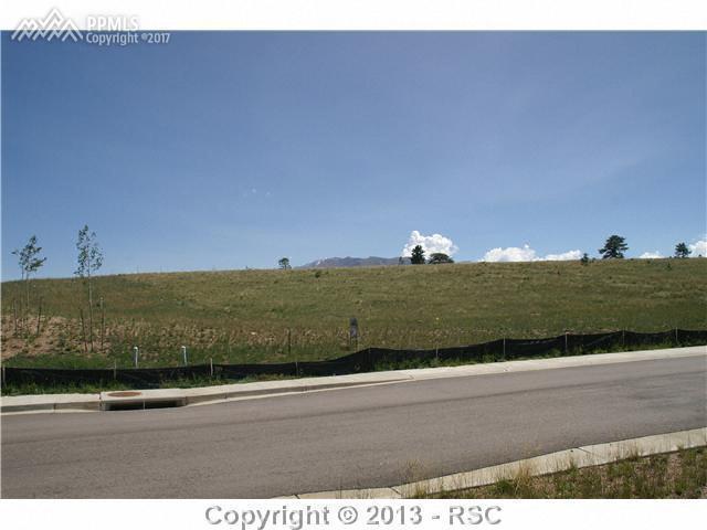 101 Samantha Way, Divide, CO 80814 (#4392485) :: 8z Real Estate