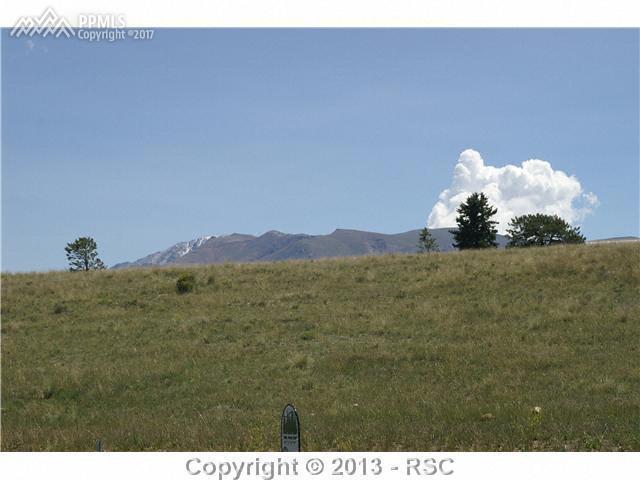 103 Samantha Way, Divide, CO 80814 (#4916851) :: 8z Real Estate
