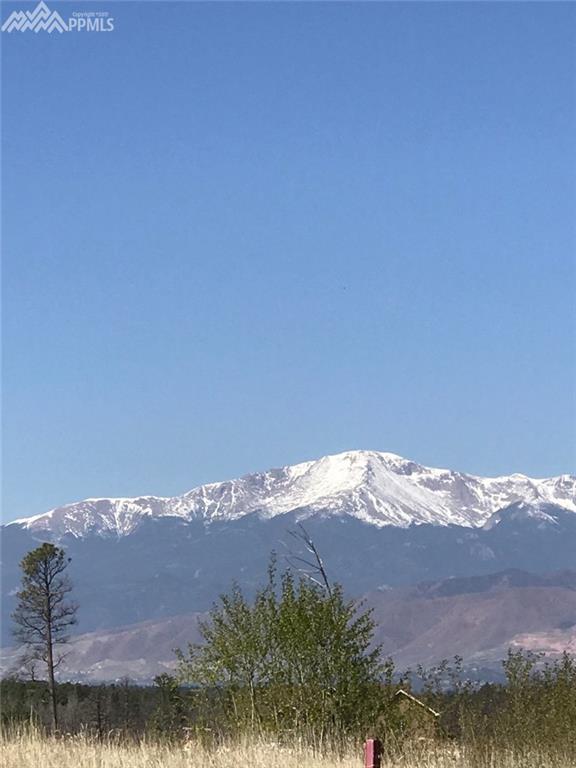 6695 Wesley Acres Way, Colorado Springs, CO 80908 (#2938742) :: 8z Real Estate