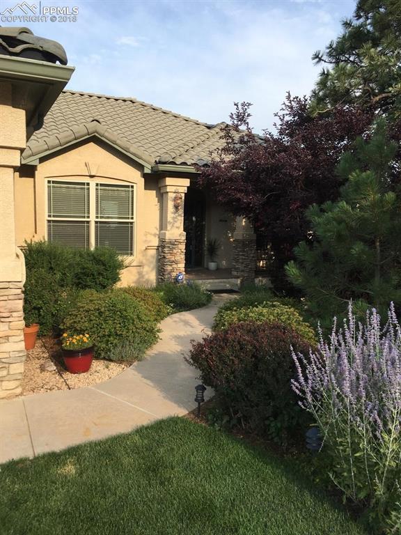 5785 Gladstone Street, Colorado Springs, CO 80906 (#6937469) :: Jason Daniels & Associates at RE/MAX Millennium